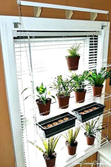 DIY floating indoor plant stand for window
