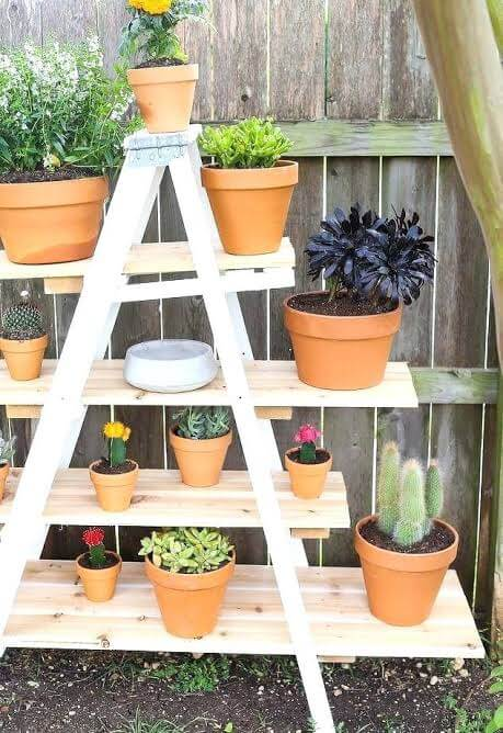 Outdoor ladder plant stands