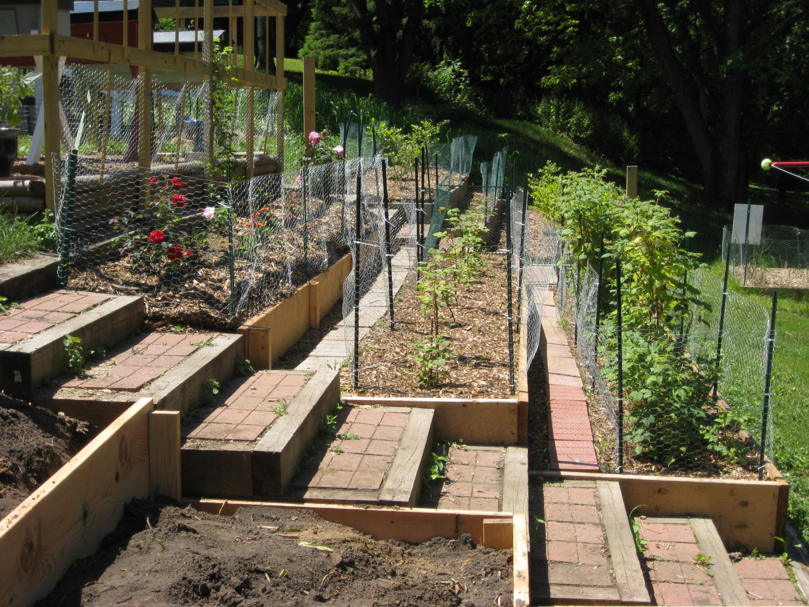 Landscaping a Fruit Garden