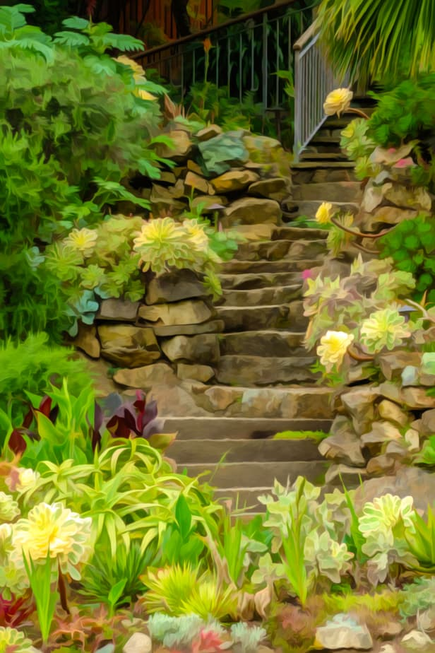 Garden Walkout for Hillside Landscaping Ideas