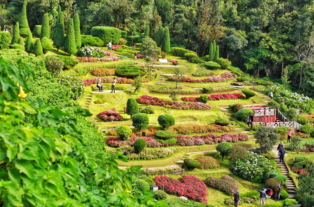 Beautiful Flower Garden Hillside